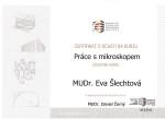 DrSlechtova_certifikat4